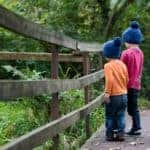 Children in hats on a bridge on the Woodland Walk at Farmer Palmers