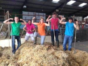 Cleaning the Animal Barn